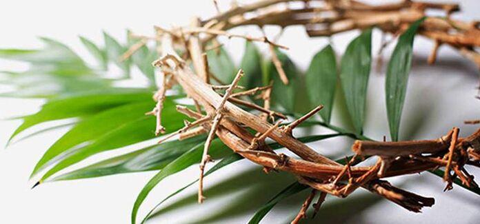 ramos e coroa de espinho - Hosana nas alturas