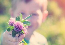 criança entregando uma flor é um ato de caridade e amor