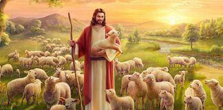 """""""(...) porque eram como ovelhas sem pastor"""" (cf. Mc 6,34b)"""