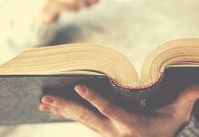 biblia católica como ler a biblia em um ano
