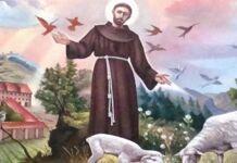 são Francisco de Assis nos ensina o caminho da santidade